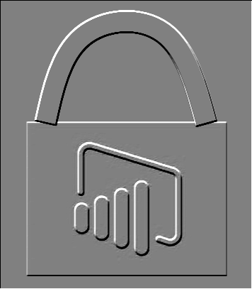 Power BI Security Logo
